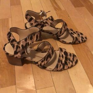J.Crew leopard calf hair sandals
